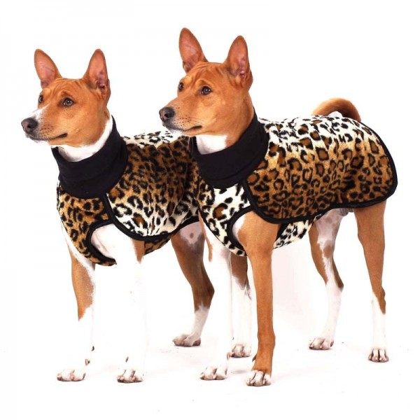 Ken Citypunk Sofa Dog Wear