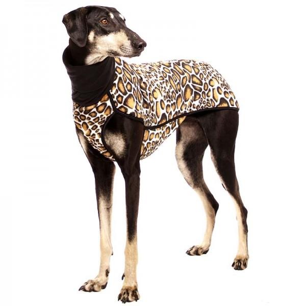 Kevin Citypunk Safari Sofa Dog Wear