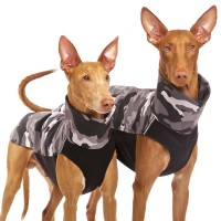 Hachico Army Sofa Dog Wear