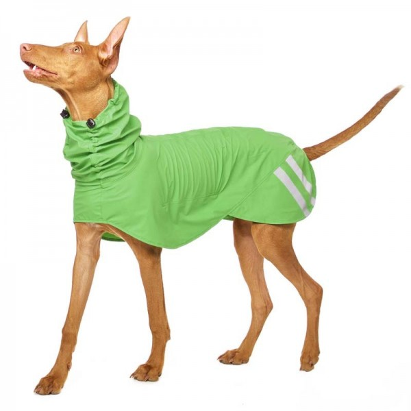 Manuel Xtra Rain Sofa Dog Wear