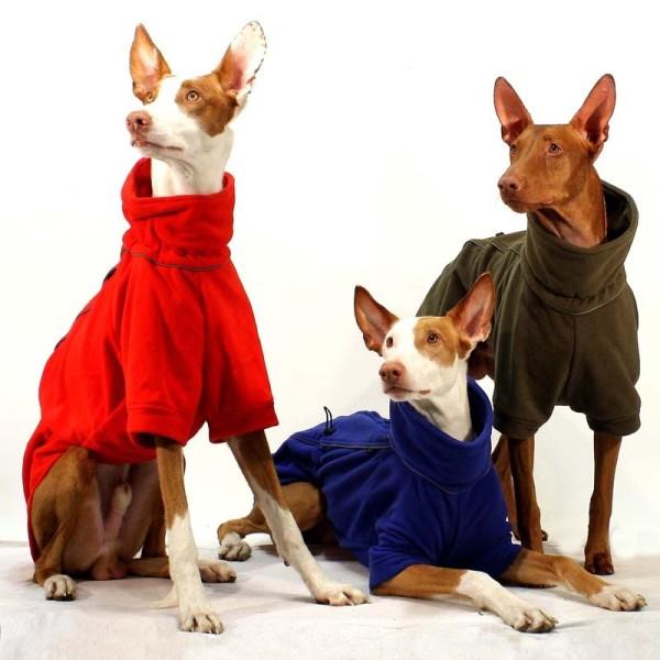 Marty Sofa Dog Wear