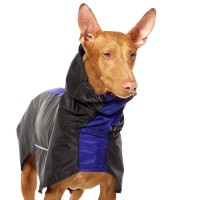 Manuel Rain Sofa Dog Wear