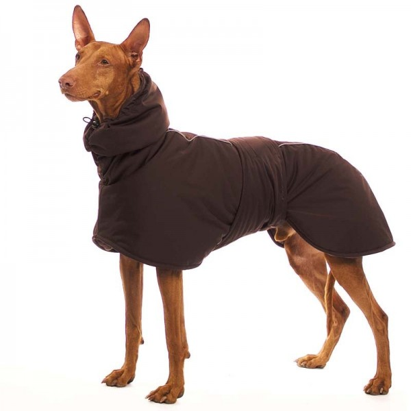 Sting Elite Sofa Dog Wear