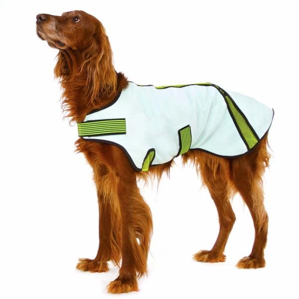 Cooling Bill Sofa Dog Wear