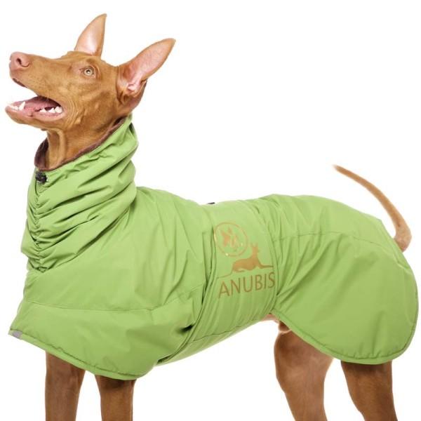 Anubis Sofa Dog Wear