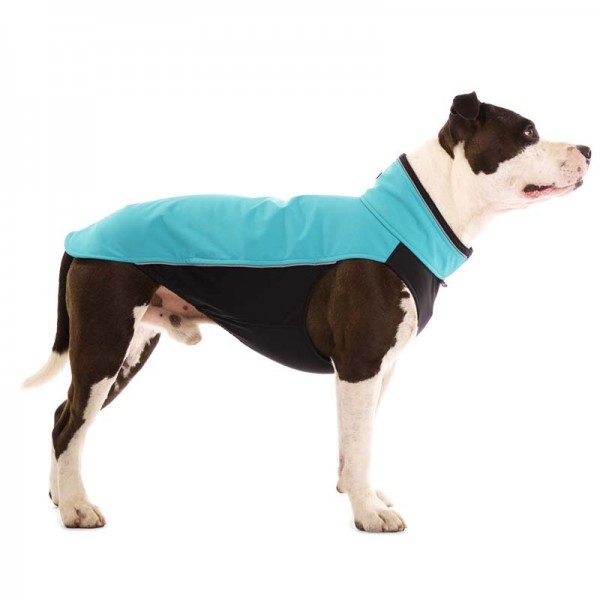Hachico Bull Sofa Dog Wear