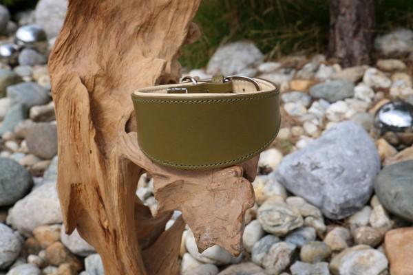 Plain Olive Windhundhalsband